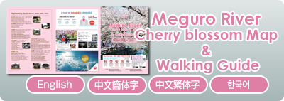 Meguro River Cherry Brossom Map & Walking Guide 2019