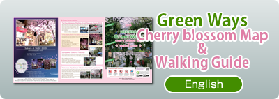 Meguro Green Road Cherry Brossom Map & Walking Guide 2019